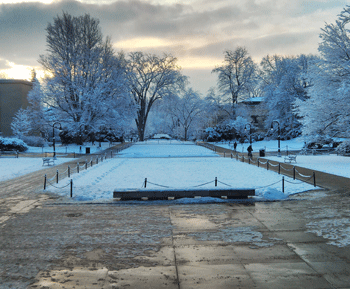 Early morning winter view of the Pattee Mall on Penn State's University Park campus. Trees with snow on the branches and fresh snow on the ground.